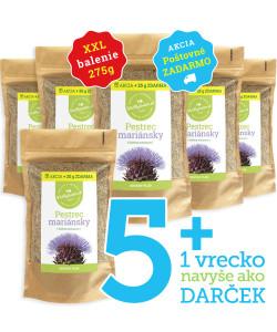 pestrec-mariansky-5+1-vasbylinkar