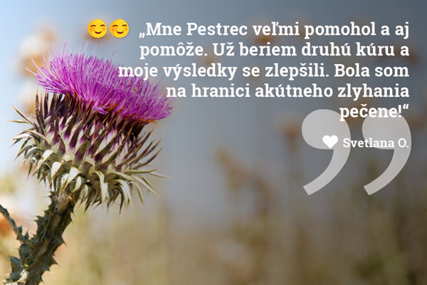 05-pestrec-mariansky-drveny-skusenosti-vasbylinkar-sk